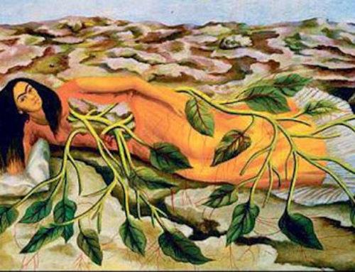 La mujer y la tierra, unión sagrada ancestral